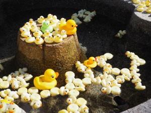 粟田神社のアヒルの手水鉢