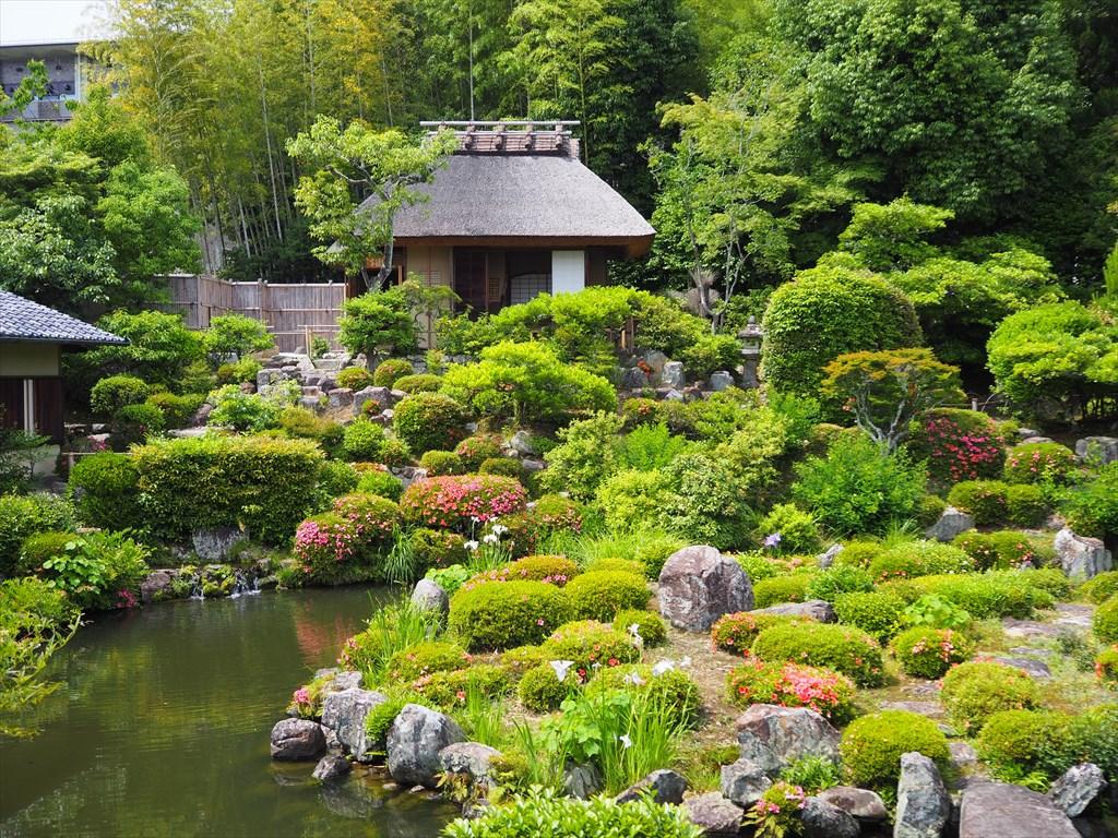 癒される緑の風景 足利将軍ゆかりの等持院