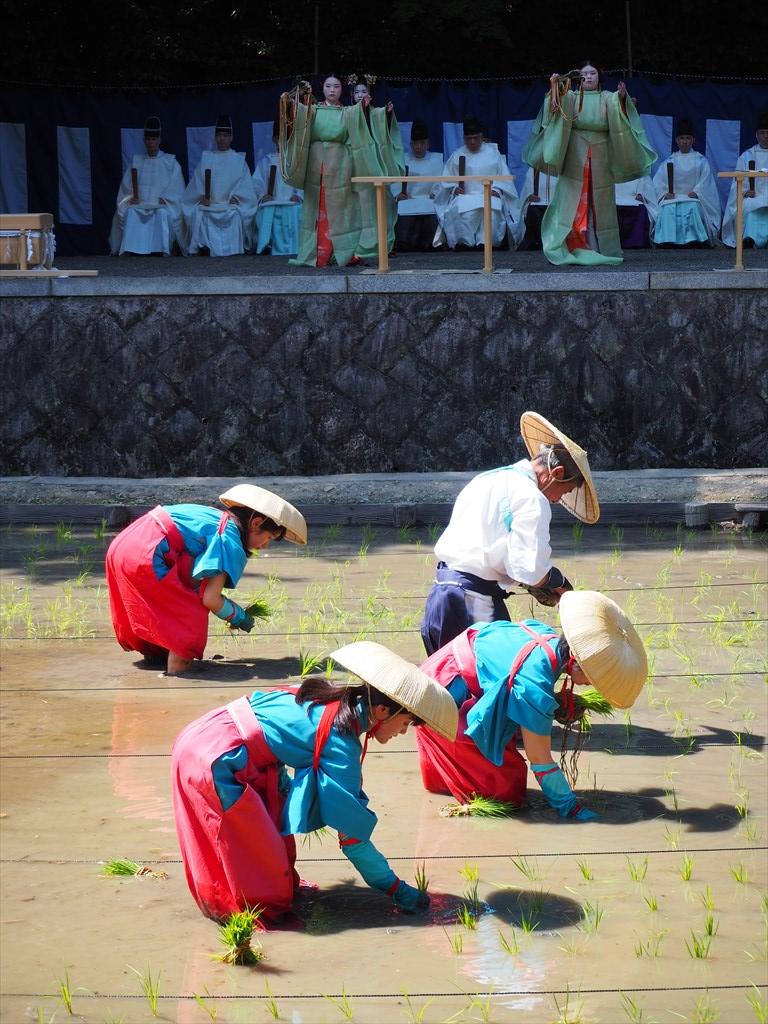 伏見稲荷大社 田植祭 2021年