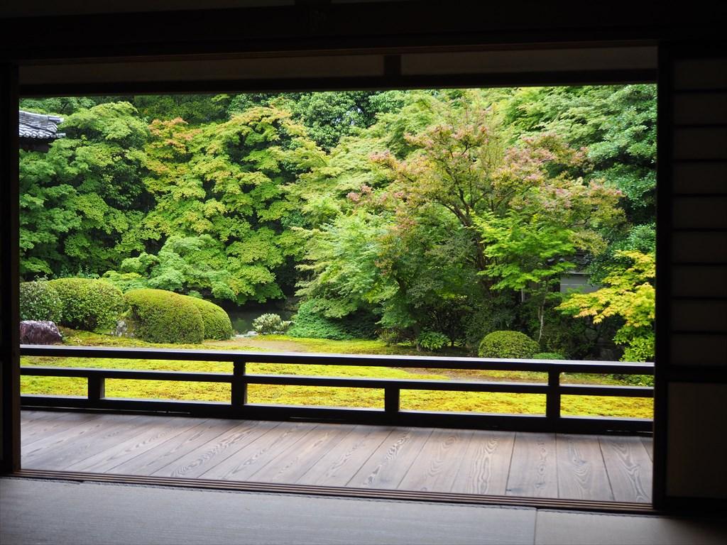雨の日にもおすすめ!苔の美しい小野小町ゆかりの隨心院