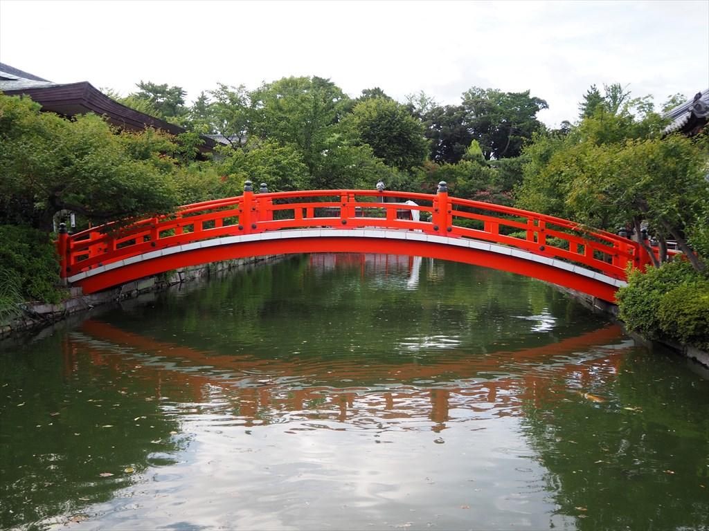 夏の神泉苑の風景