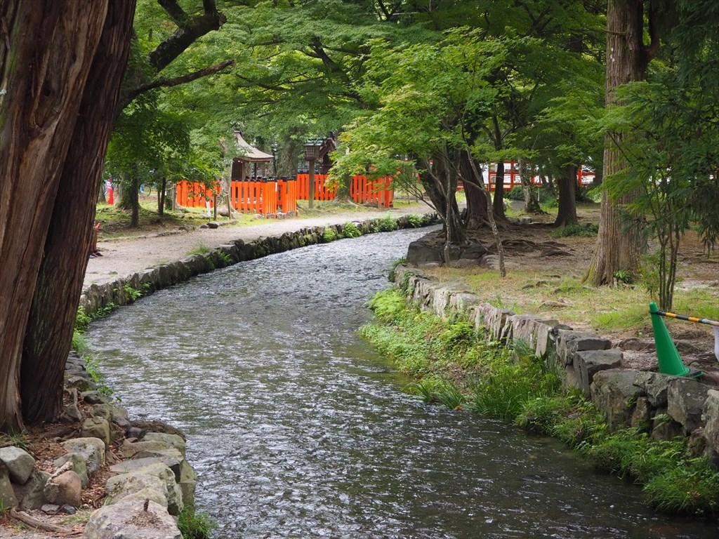 上賀茂神社の風景