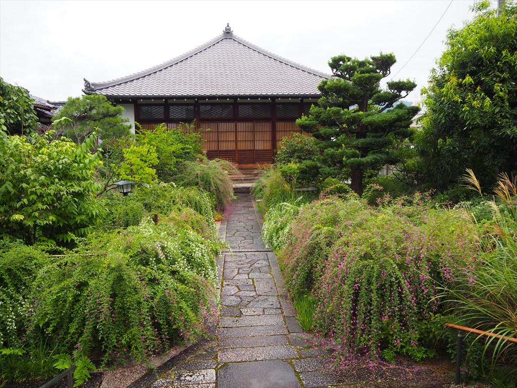 常林寺の萩が見ごろ